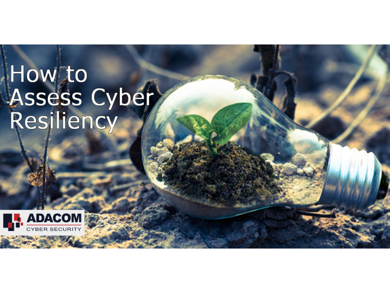 How Can Organisations Assess Cyber Resiliency?